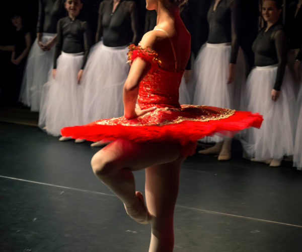 Ballet Workout Tatevik Mkrtoumian, ballet voor volwassenen, professionele ballerina, ballet workout boek, ballet workout app, balletschool