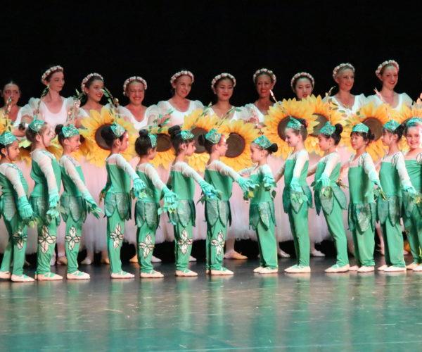 Bloemenwals australie, balletlessen voor kinderen in antwerpen, balletschool voor kinderen