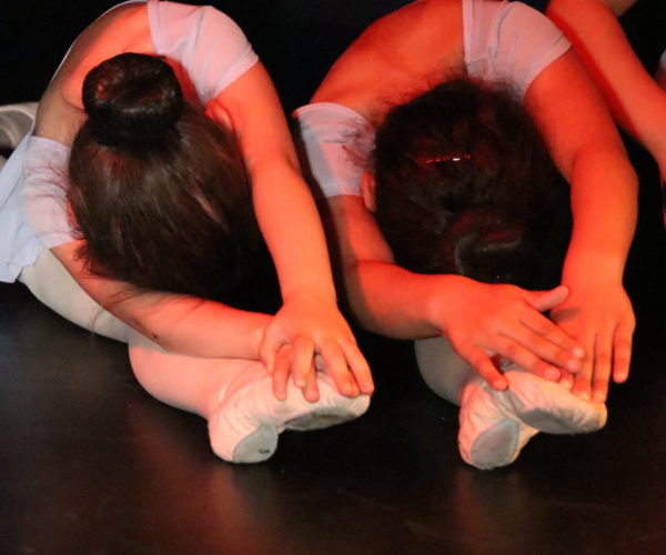 balletschool ballet workout tatevik mkrtoumian,balletlessen in antwerpen, balletschool voor kinderen en volwassene (1)