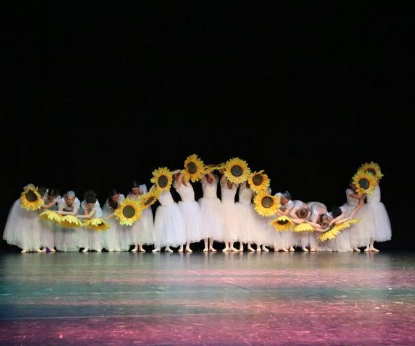 balletschool ballet workout tatevik mkrtoumian,balletlessen in antwerpen, balletschool voor kinderen en volwassene (11)