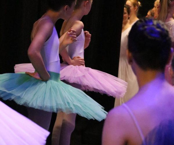 balletschool ballet workout tatevik mkrtoumian,balletlessen in antwerpen, balletschool voor kinderen en volwassene (4)