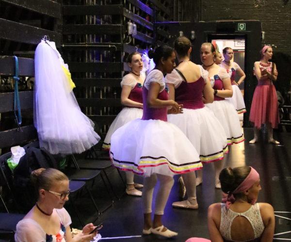 balletschool ballet workout tatevik mkrtoumian,balletlessen in antwerpen, balletschool voor kinderen en volwassene (9)